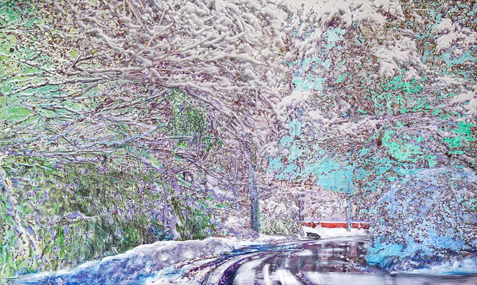 snow in charlotte, 2016 Oil, pigment ink, pastel a...