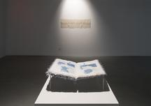 Annabel Daou: a million times - Project Space - Exhibitions