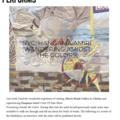 NYC: Hangama Amiri 'Wandering Amidst the Colors'
